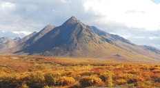 Dempster highway Park with Nature Tours of Yukon