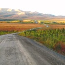 Nature Tours of Yukon's Dempster Higway tour